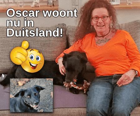 Oscar woont nu in Duitsland